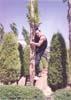 23- Martial Arts,Technique Open Foot 180 degrees,top of tree,M.R.Yahyaei,هنر های رزمی,تکنیک پاباز 180 درجه,بالای درخت,استاد محمّد رضا یحیایی