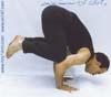 28- Yoga,Technique Crow,M R Yahyaei,یوگا,تکنیک کلاغ,استاد محمّد رضا یحیایی