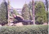 45- Doctorian Martial Arts,Technique Open Foot 180 degrees-between two trees,Supreme Master M R Yahyaei,طریقت هنرهای رزمی,تکنیک پا باز 180 درجه,مابین دو درخت,استاد اعظم محمّد رضا یحیایی